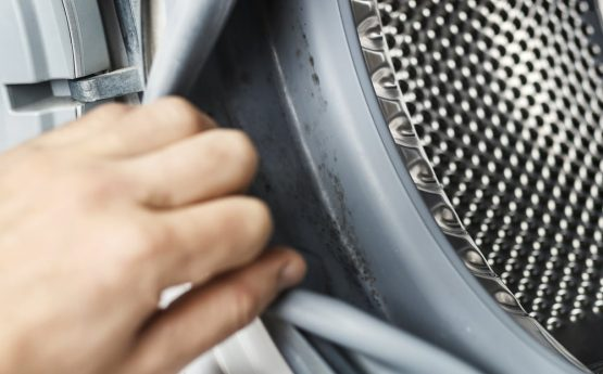 Tips to Remove Mold from Washing Machines